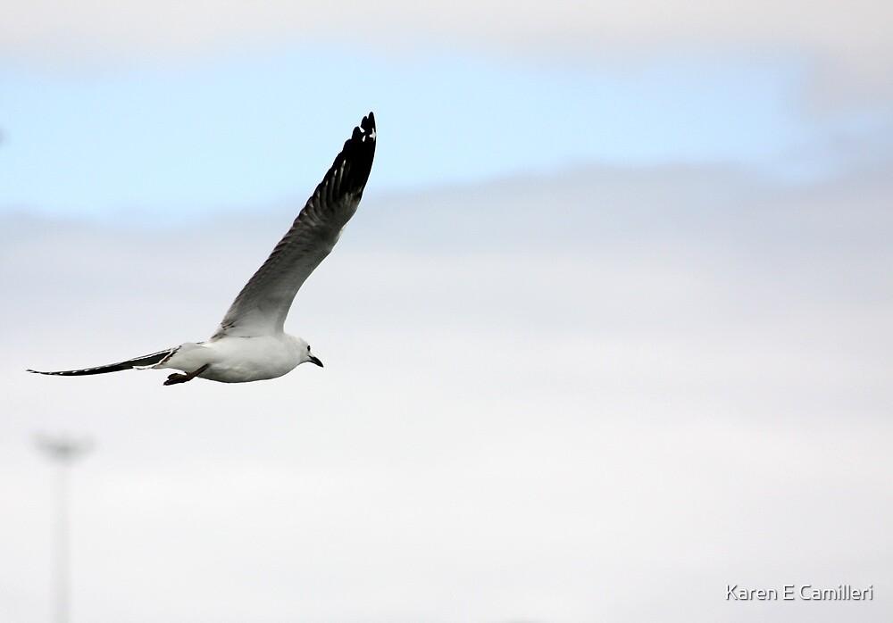 free spirit by Karen E Camilleri