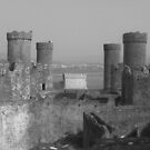 Conwy Castle in B&W by Michaela1991