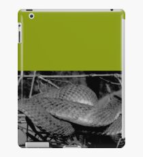 Viper iPad Case/Skin