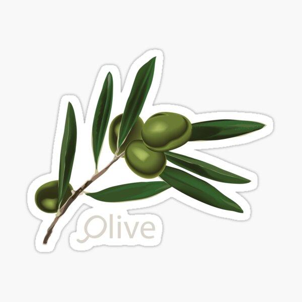 Olive Branch Sticker