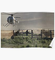 Wild Horse Roundup At Triple B Poster