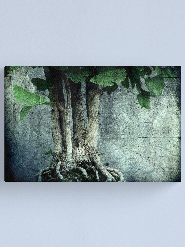 Alternate view of Roots Canvas Print