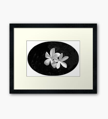 Simplicity in Black & White  Framed Print