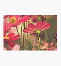 Stand up! girls...Sold, Got explore Featured, Got 3 Featured Works Photographic Print