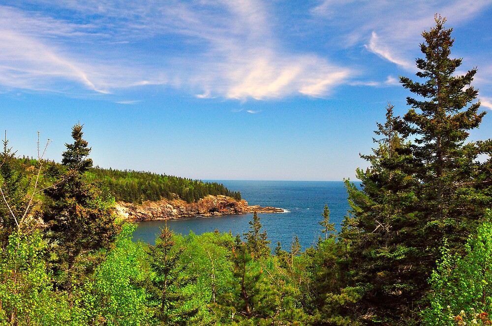 Coastline, Acadia National Park, Mt. Desert Island, Maine by fauselr