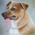 Tammy in Pastel by Woodie