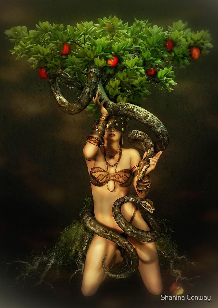 Snake Charmer by Shanina Conway