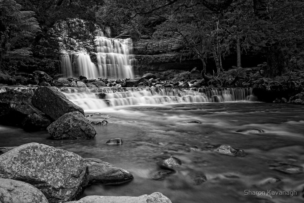 Lost in the moment_Liffey Falls by Sharon Kavanagh