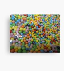 pellets on the loose... Canvas Print