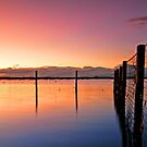 Dawn Delight - Redland Bay by Beth  Wode