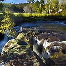 Oxford Falls area by Doug Cliff