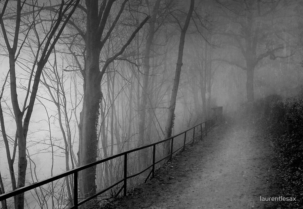 Dark way by laurentlesax