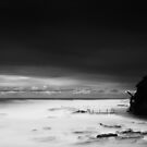 Swell - Avalon Beach by Gareth Bowell