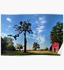 Old Red Barn Finley Refuge - USA - Poster