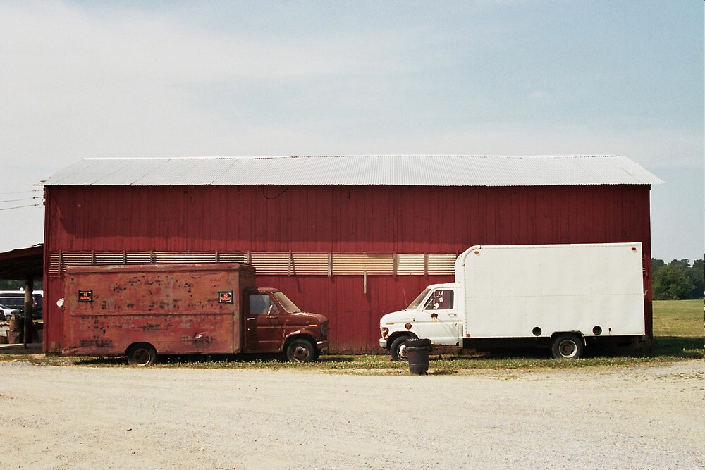 Red and White Trucks at Barn by jamiecwagner