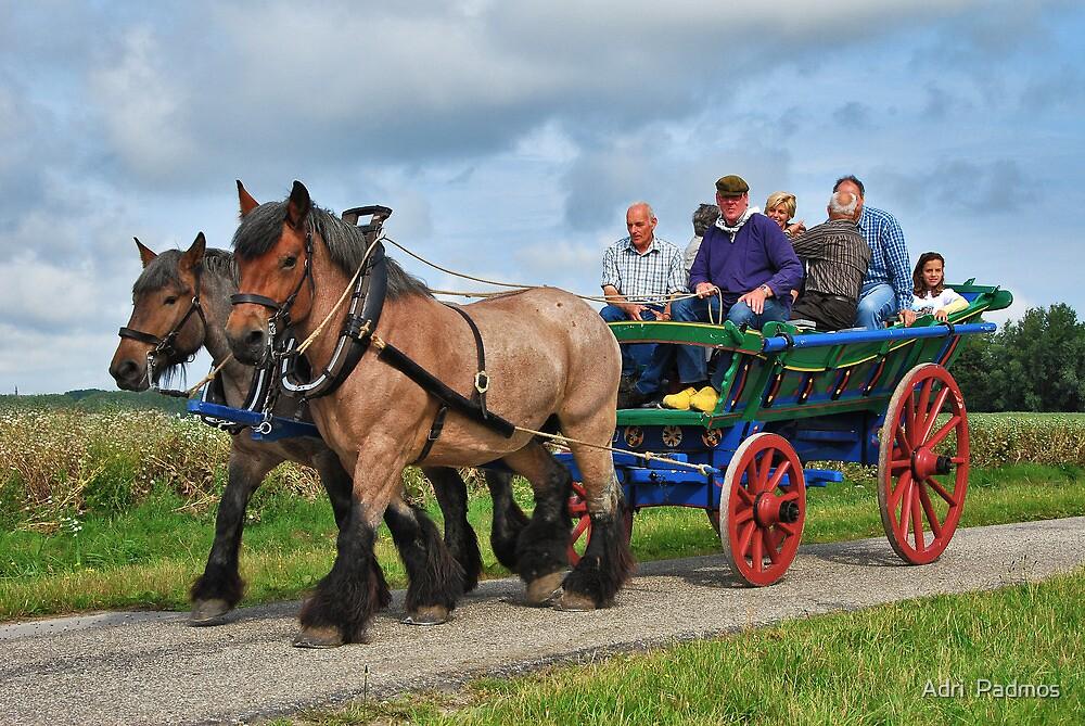 Farmer's wagon from Schouwen. by Adri  Padmos