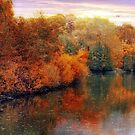 Autumn Reflections by Jessica Jenney