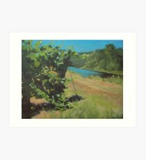 Vineyard on the River Art Print