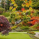 Autumn in Butchart Gardens,  by AnnDixon