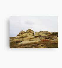Writing-on-Stone in Autumn Canvas Print