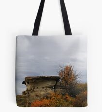 Writing-on-Stone in Autumn Tote Bag