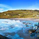 The Beach Shacks by Mark  Lucey
