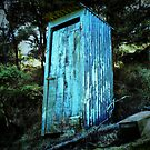 Outhouse 2 by Lynne Haselden