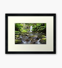 Hopetoun Falls, Otways, Great Ocean Road, Victoria, Australia Framed Print