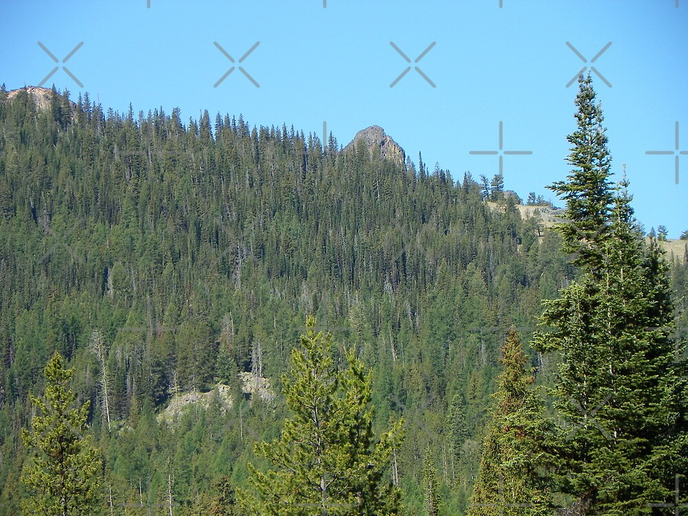 Greenhorn Mountains by Betty  Town Duncan