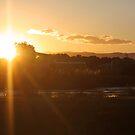 Wetland Sunset by byronbackyard