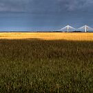 Early Morning Marsh and Modern Bridge by J Jennelle