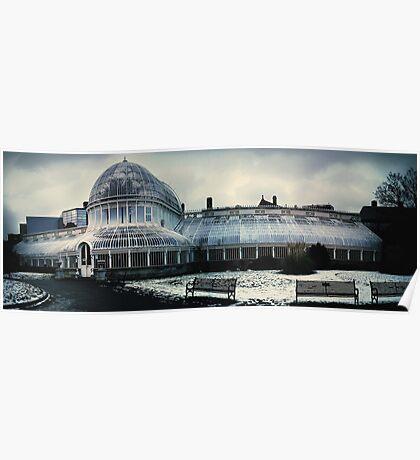 Belfast Botanical Gardens N.I Poster