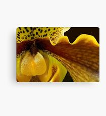 Orchid in Yellow Ochre Canvas Print