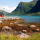 By the fjord by ilpo laurila