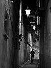 Night Walker by Mojca Savicki
