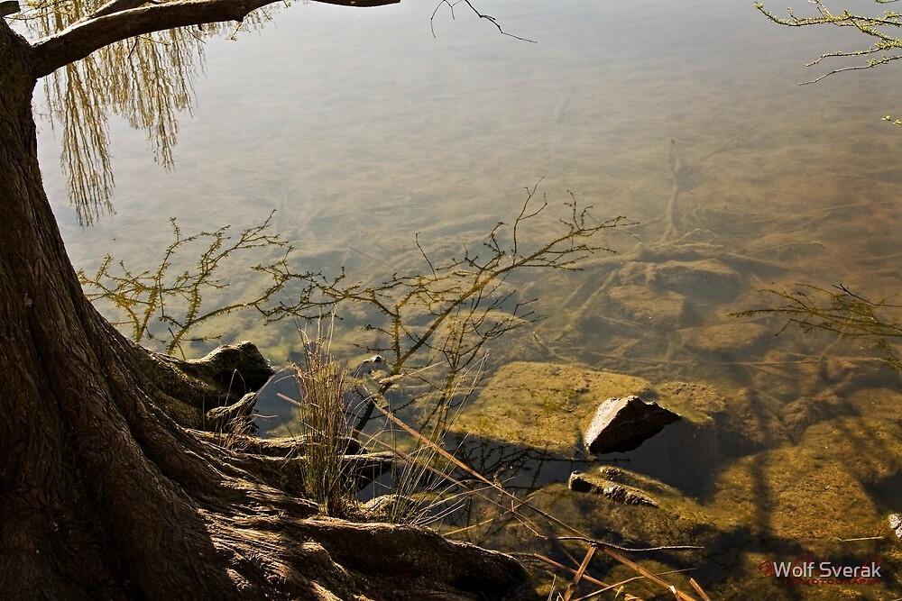 Lake Ginninderra in Canberra/ACT/Australia (6) by Wolf Sverak