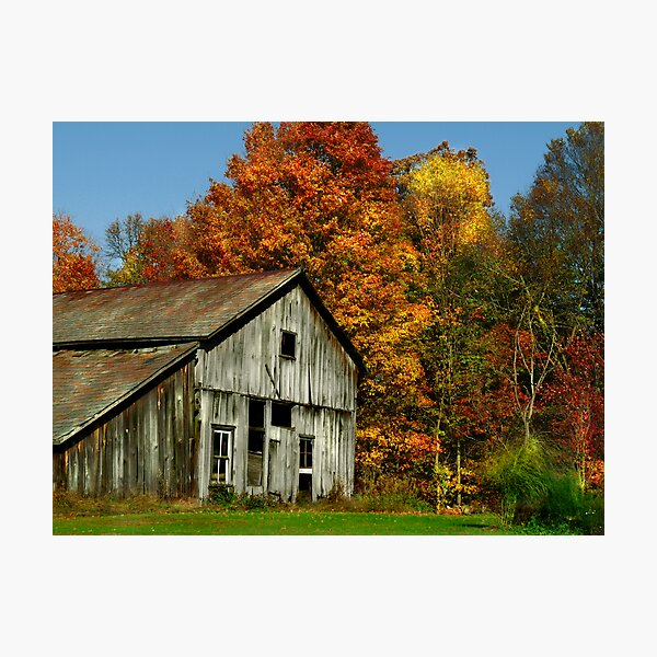 Simply Country Photographic Print