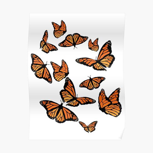 Monarch Butterflies  Poster