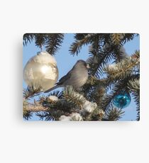 ready for Christmas Canvas Print