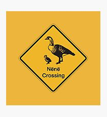 Nene Crossing, Traffic Warning Sign, Hawaii Photographic Print