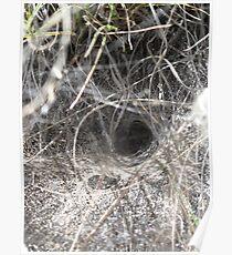 Spiderweb tunnel Poster
