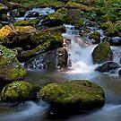 Below the Falls by Martin Smart