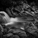 """El Yunque Caribbean Rainforest Falls"" by Jaime Hernandez"