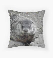 Groundhog day! Throw Pillow