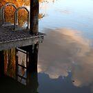 Hows the serenity?  by Gavin Kerslake