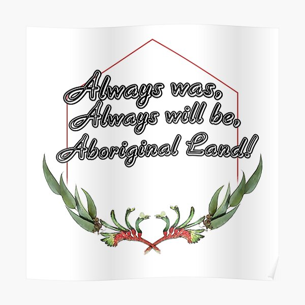 Red kangaroo paw Poster