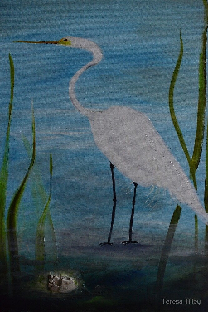 White Egret by ttilley