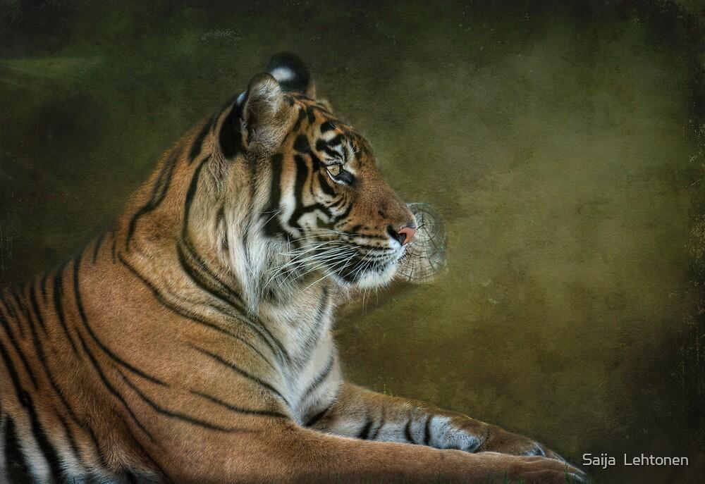Tiger in Crisis by Saija  Lehtonen