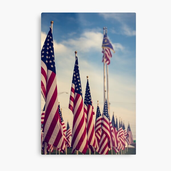 USA Flags Metal Print