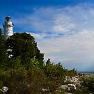 Cana Island Lighthouse by David Lampkins